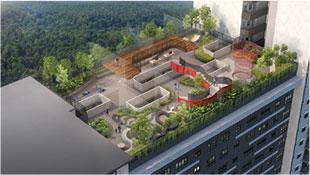 Sky Garden (Level 36-37)